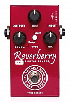 AMT RY-1 Reverberry